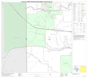 Primary view of object titled 'P.L. 94-171 County Block Map (2010 Census): Tarrant County, Block 41'.