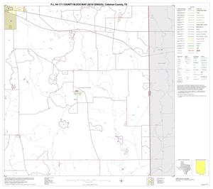 Primary view of object titled 'P.L. 94-171 County Block Map (2010 Census): Coleman County, Block 16'.