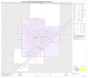Primary view of object titled 'P.L. 94-171 County Block Map (2010 Census): Gaines County, Inset B01'.