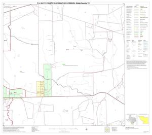 Primary view of object titled 'P.L. 94-171 County Block Map (2010 Census): Webb County, Block 43'.