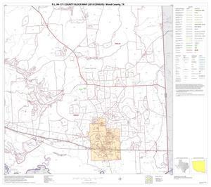 Primary view of object titled 'P.L. 94-171 County Block Map (2010 Census): Wood County, Block 17'.