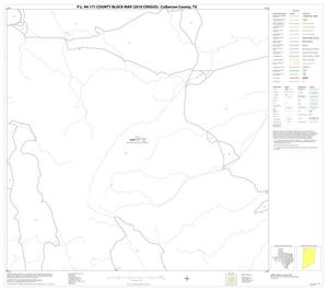 Primary view of P.L. 94-171 County Block Map (2010 Census): Culberson County, Block 8