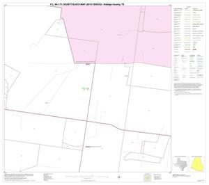 Primary view of object titled 'P.L. 94-171 County Block Map (2010 Census): Hidalgo County, Block 42'.