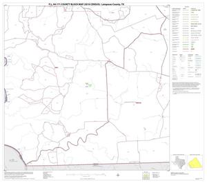 Primary view of object titled 'P.L. 94-171 County Block Map (2010 Census): Lampasas County, Block 13'.