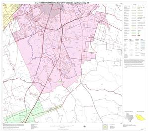 Primary view of object titled 'P.L. 94-171 County Block Map (2010 Census): Angelina County, Block 12'.