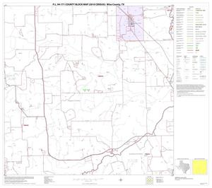 Primary view of object titled 'P.L. 94-171 County Block Map (2010 Census): Wise County, Block 17'.