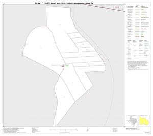 Primary view of object titled 'P.L. 94-171 County Block Map (2010 Census): Montgomery County, Inset C01'.