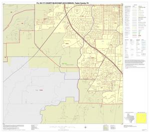 Primary view of object titled 'P.L. 94-171 County Block Map (2010 Census): Taylor County, Inset E03'.