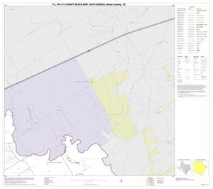 Primary view of object titled 'P.L. 94-171 County Block Map (2010 Census): Bexar County, Block 29'.
