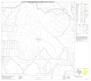 Primary view of object titled 'P.L. 94-171 County Block Map (2010 Census): Brewster County, Block 67'.