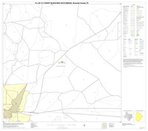 Primary view of object titled 'P.L. 94-171 County Block Map (2010 Census): Brewster County, Block 20'.