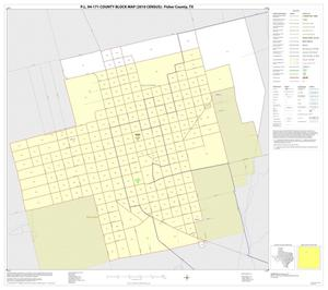 Primary view of object titled 'P.L. 94-171 County Block Map (2010 Census): Fisher County, Inset A01'.