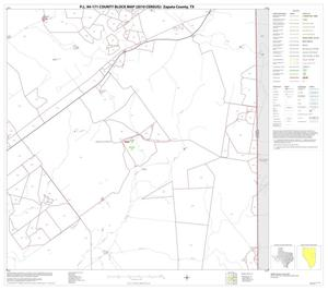 Primary view of object titled 'P.L. 94-171 County Block Map (2010 Census): Zapata County, Block 12'.