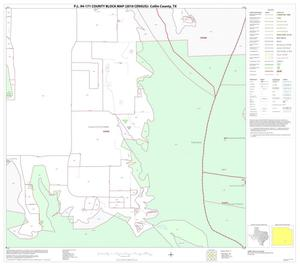 Primary view of object titled 'P.L. 94-171 County Block Map (2010 Census): Collin County, Block 77'.