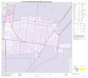 Primary view of object titled 'P.L. 94-171 County Block Map (2010 Census): Nueces County, Inset E01'.