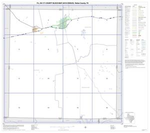 Primary view of object titled 'P.L. 94-171 County Block Map (2010 Census): Nolan County, Index'.