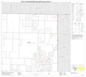 Primary view of object titled 'P.L. 94-171 County Block Map (2010 Census): Gaines County, Block 5'.