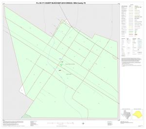 Primary view of object titled 'P.L. 94-171 County Block Map (2010 Census): Mills County, Inset A01'.