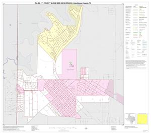 Primary view of object titled 'P.L. 94-171 County Block Map (2010 Census): Hutchinson County, Inset D01'.