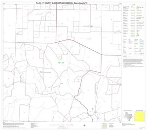 Primary view of object titled 'P.L. 94-171 County Block Map (2010 Census): Moore County, Block 7'.
