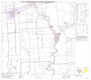 Primary view of object titled 'P.L. 94-171 County Block Map (2010 Census): Matagorda County, Block 14'.