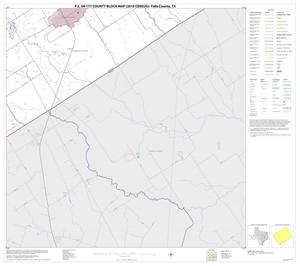 Primary view of object titled 'P.L. 94-171 County Block Map (2010 Census): Falls County, Block 19'.