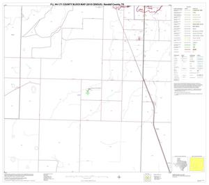 Primary view of object titled 'P.L. 94-171 County Block Map (2010 Census): Randall County, Block 10'.