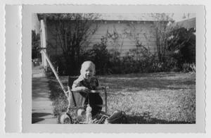Primary view of object titled '[Todd Bradford Willis in a Stroller]'.