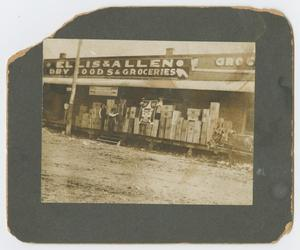 Primary view of object titled '[Ellis & Allen Dry Food and Goods]'.
