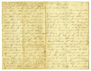 Primary view of object titled '[Letter to Milton Parks from Dollie Smith, 1864]'.