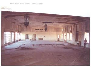Primary view of object titled '[The Baker Hotel Roof Garden]'.