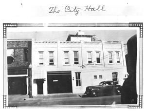 Primary view of object titled 'The [Old] City Hall'.