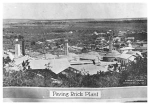 Primary view of object titled 'Paving Brick Plant'.