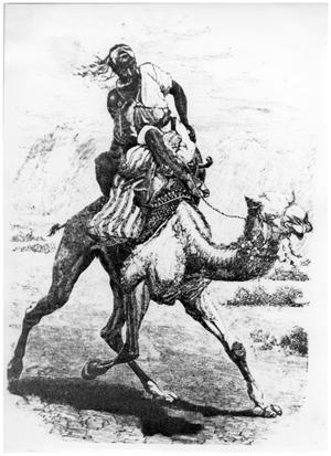 Primary view of object titled '[Man in native African clothes riding camel]'.