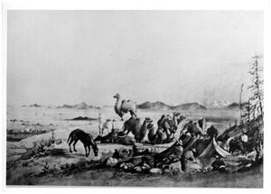 Primary view of object titled '[Typical US Army Camel Corps camp]'.