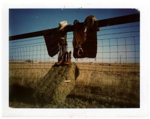 Primary view of object titled '[Tools of the cowboy on Edwards' fence]'.