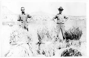 Primary view of object titled '[Wayne and Gene Cartledge standing in a field in Castolon]'.