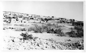 Primary view of object titled '[The village of Terlingua]'.