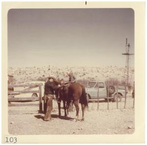 Primary view of object titled '[Cowboy with horse]'.