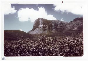 Primary view of object titled '[Mountains and hills at Big Bend National Park]'.
