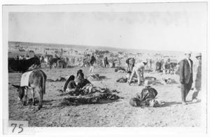 Primary view of object titled '[Mexican refugees fleeing from Pancho Villa]'.
