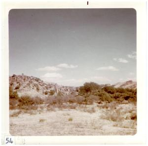 Primary view of object titled '[Big Bend landscape with mountains and trees]'.