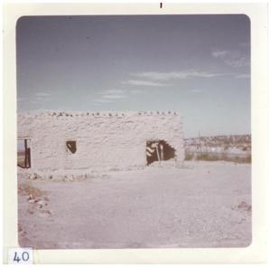 Primary view of object titled '[Fort Leaton ruins in Big Bend]'.