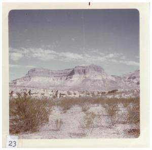 Primary view of object titled '[Mountainous desert landscape in Big Bend with bushes]'.