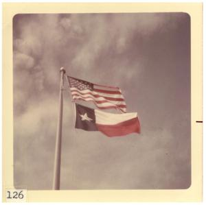 Primary view of object titled '[American and Texas flags]'.