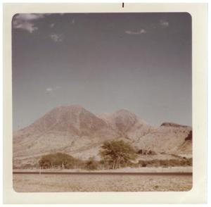 Primary view of object titled '[Picture of Big Bend desert landscape]'.