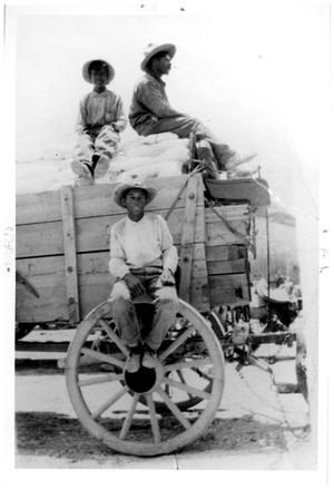 Primary view of object titled 'Carrasco Transport Wagon'.