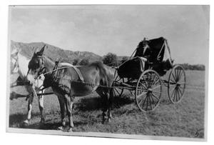 Primary view of object titled '[Man in a Carriage]'.