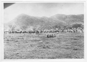 Primary view of object titled '[Campers in a Field]'.