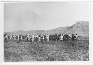 Primary view of object titled '[Photograph of People and Horses in a Field]'.